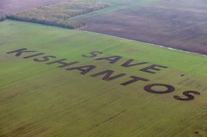 Forrás: Greenpeace